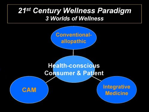 "Working Wellness Around the ""System,"" part 2"
